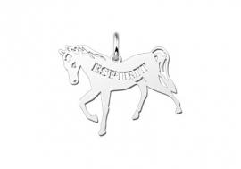 Names4ever Paard Naamhanger Zilver ZNDH003