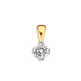 Excellent Jewelry Geelgouden Hanger met Witgouden Zirkonia Vlak