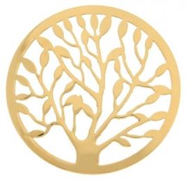 MY iMenso munt boom met goudkleurige coating 33-0481