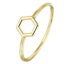 Slanke Geelgouden Ring met Klein Zeshoekig Kopstuk