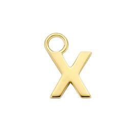 14K Geelgouden Oorringhanger met Letter X