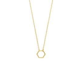 Gouden Collier met Opengewerkte Zeshoekige Decoratie
