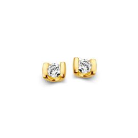 Excellent Jewelry Neutrale Geelgouden Oorstekers met Zirkonia's