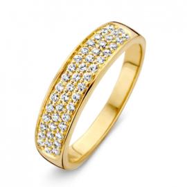 Excellent Jewelry Geelgouden Dames Ring met Zirkonia's