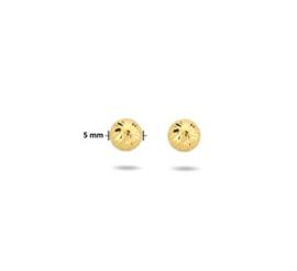 Gouden Oorknoppen Rond Gediamanteerd 5mm