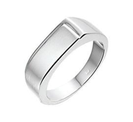 Slanke Gepolijst met Matte Zilveren Ring voor Heren