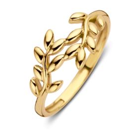 Excellent Jewelry Geelgouden Ring met Blaadjes