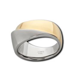Gepolijste Bicolor Ring van Edelstaal van M&M