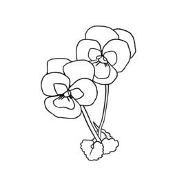 Goudkleurige Ovale Geboortebloem Hanger met Ketting van Zilver | Birth Flower Necklace