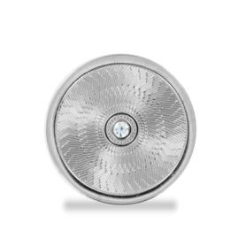 LOCKits Zilverkleurige Luxueuze Zirkonia Munt 25mm