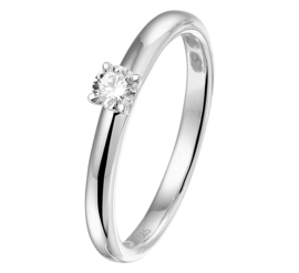 Witgouden Ring met Diamant en Palladium