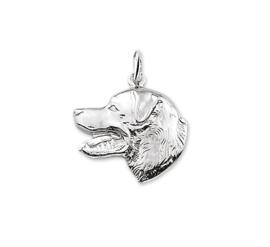 Labrador Kop Bedel van Zilver 10.04226