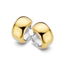 Excellent Jewelry Robuuste Bicolor Creolen voor Dames