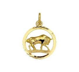 Sterrenbeeld Stier Gouden Hanger