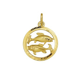 Sterrenbeeld Vissen Gouden Hanger