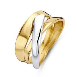Excellent Jewelry Brede Geelgouden Ring met Witgouden Strook