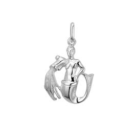Waterman Sterrenbeeld Bedel van Zilver 10.02752