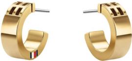 Goudkleurige Oorsieraden van Edelstaal van Tommy Hilfiger