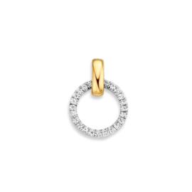 Excellent Jewelry Ronde Hanger met Geelgouden Oogje