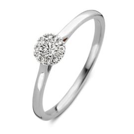 Excellent Jewelry Witgouden Ring met Schitterend Briljant Kopstuk