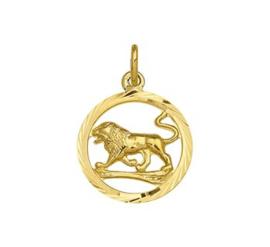 Sterrenbeeld Leeuw Gouden Hanger