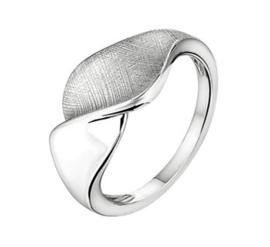 Zilveren Ring met Gescratcht Kronkelend Kopstuk