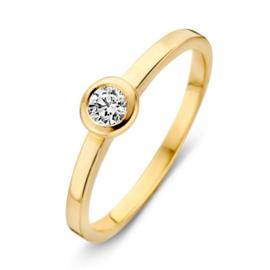 Excellent Jewelry Geelgouden Ring met Rondje met Zirkonia