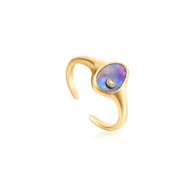 Ania Haie Turning Tides Goudkleurige Ring van Zilver