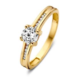 Excellent Jewelry Geelgouden Ring met Zirkonia Kopstuk