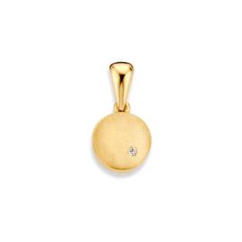 Excellent Jewelry Geelgouden Gematteerde Hanger met Zirkonia