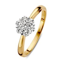 Excellent Jewelry Gouden Bolstaande Ring met Briljant Kopstuk