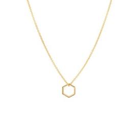 Gouden Collier met Zeshoekig Hanger