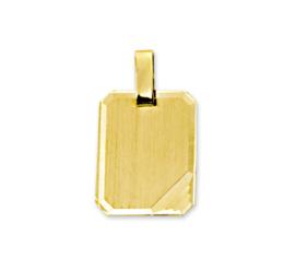 Gouden Graveerhanger met Diagonale Lijnen