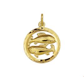 Gouden Hanger Sterrenbeeld Vissen Gediamanteerd