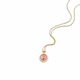 Gouden Medaillon met Oktober Geboortesteen Insignia en Ketting van MY iMenso Gold