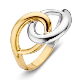 Excellent Jewelry Bicolor Ring met Twee Opengewerkte Cirkels