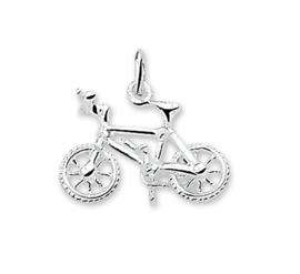 BMX-Fiets Bedel van Gepolijst Zilver 10.03225