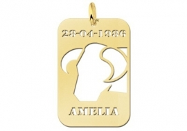Names4ever Stier Horoscoop Hanger in Goud GHS038