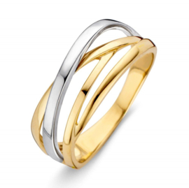 Excellent Jewelry Bicolor Intrigerende Dames Ring