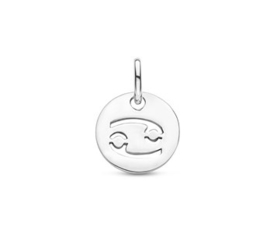 Kreeft Sterrenbeeld Hanger | Zilver