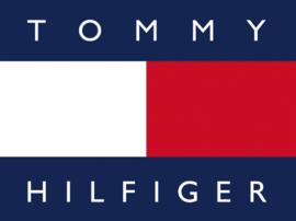 Blauw Heren Horloge met Siliconen Horlogeband van Tommy Hilfiger TH1791721