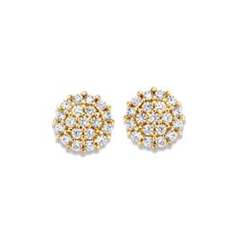 Excellent Jewelry Geelgouden Rondjes Oorstekers met Zirkonia's