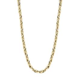 Excellent Jewelry Luxe Gouden Schakelcollier
