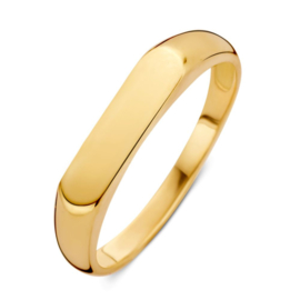 Excellent Jewelry Geelgouden Ring met Plaatje