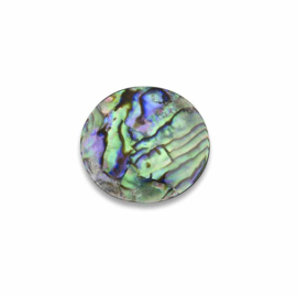 Oblique Schelp Abalone Munt van MY iMenso