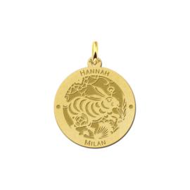 Ronde Chinese Sterrenbeeld Konijn Hanger van Goud