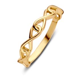 Excellent Jewelry Geelgouden Ring met Vier Infinity Tekens