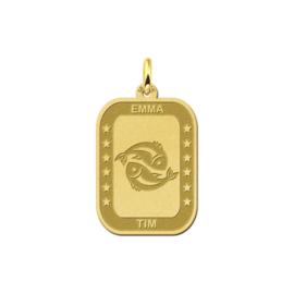 Rechthoekige Vissen Sterrenbeeld Hanger van Goud