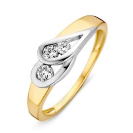 Excellent Jewelry Geelgouden Dames Ring met Witgouden Kopstuk