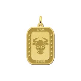 Rechthoekige Stier Sterrenbeeld Hanger van Goud